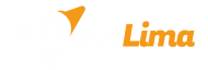 agencia de diseño web y posicionamiento webslima